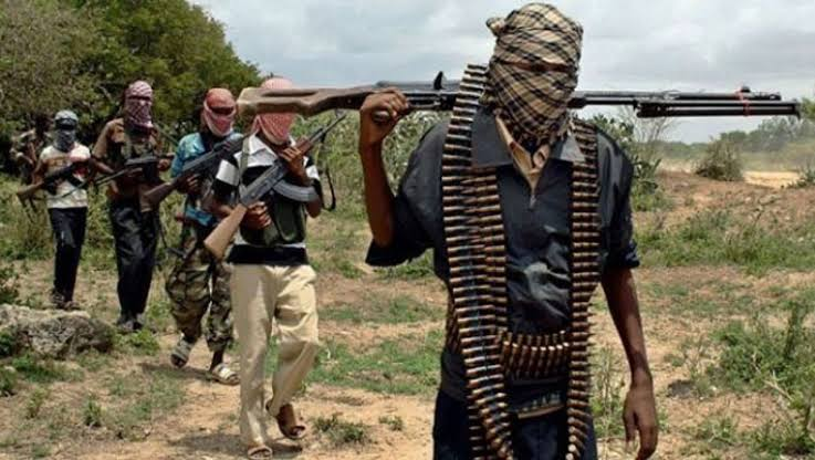 Army clarifies air on Borno ambush, says 100 terrorists killed