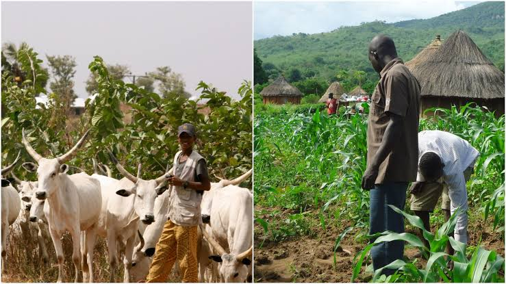 Farmers/Herders crisis claims 60  , 000 lives from 2001 to 2018- Research
